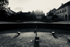 Smartphonefotografie Alteglofsheim WOPU 007