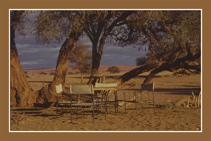010_Morgen_in_Namibia