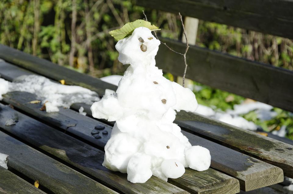 Erster_Schnee_Web